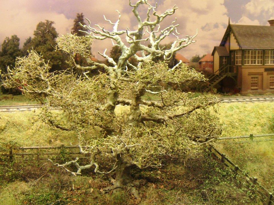 tree ccottage (12)